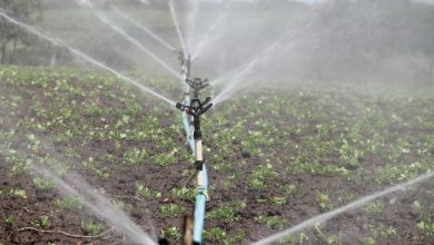 Effective-Irrigation