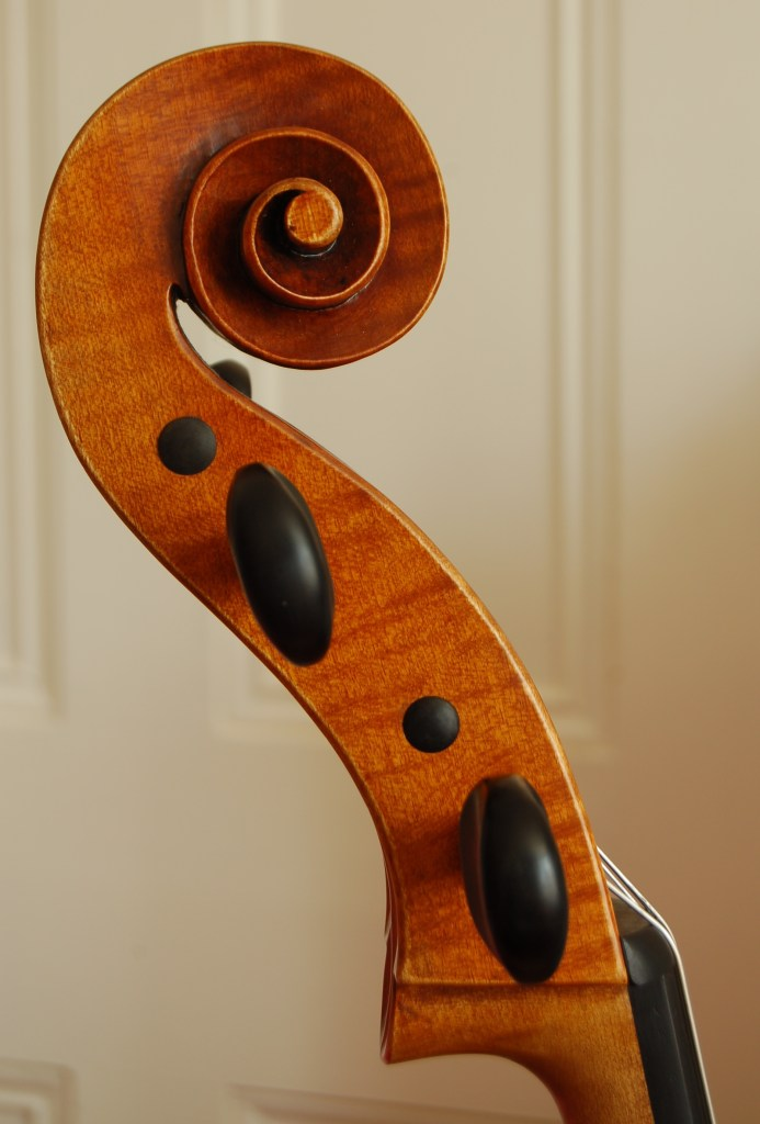 Guadagnini cello scroll by Robin Aitchison