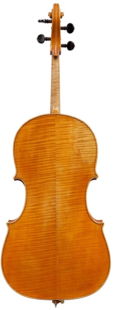Aitchison Guadagnini cello copy