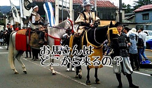 藩公行列の馬はどこから来る?地元民が教える隠れた見どころとは!