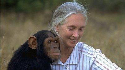 Jane Goodall Story in Hindi
