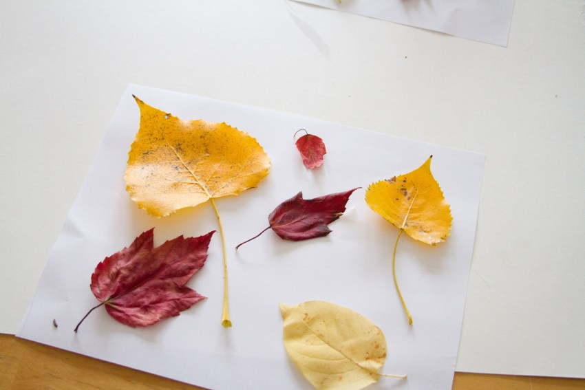 leafpainting-4