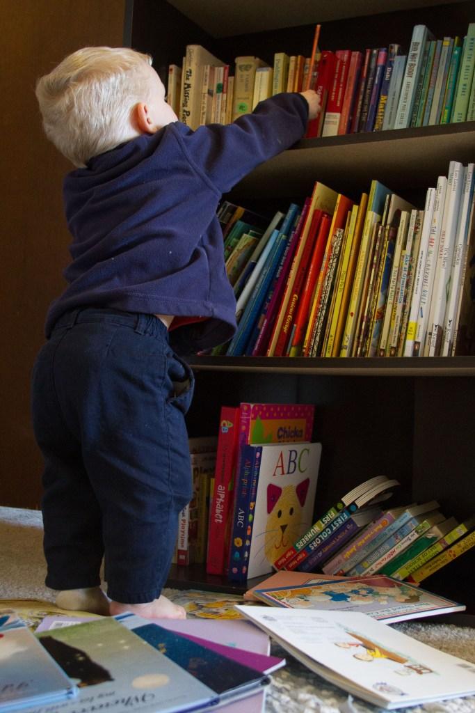 bookcase-4