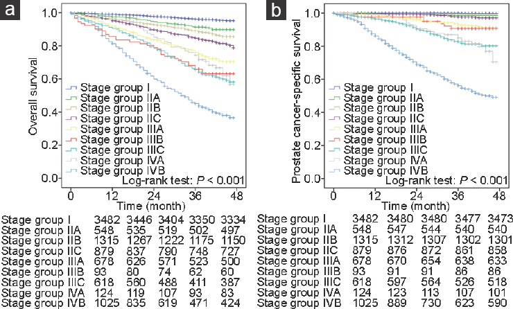 The performance of the new prognostic grade and stage