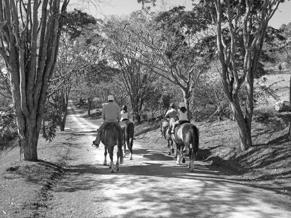 Fazenda Capoava cavalos pb