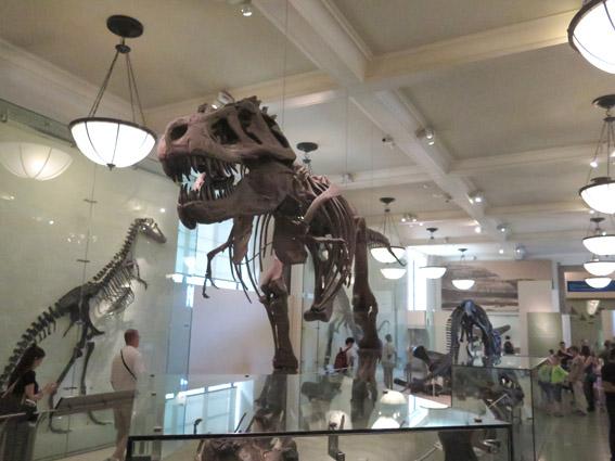 As Laranjinhas em NY - Sala Rex Dinossauro do Museu de História Natural