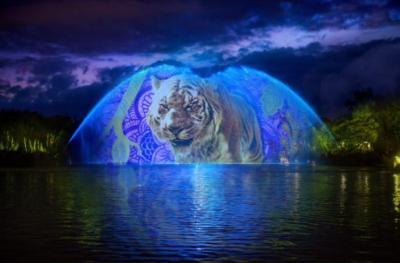 Animal Kingdon Soarin Live with Magic - David Roark