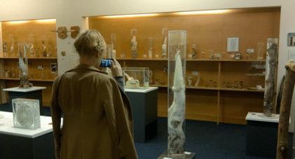 Museu do Penis