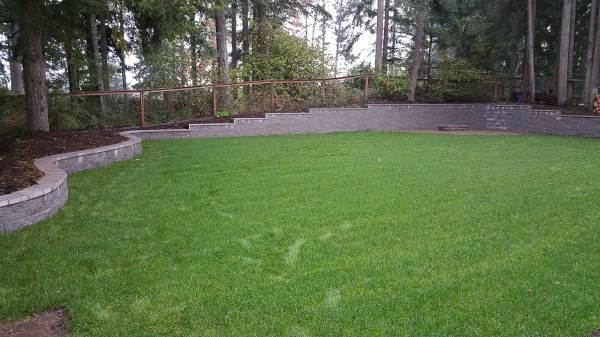 complete backyard landscaping overhaul