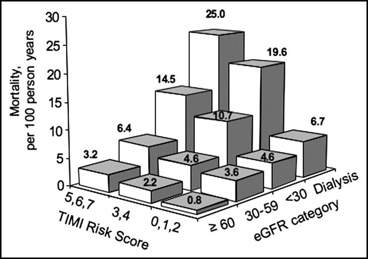 Thrombolysis In Myocardial Infarction (TIMI) Risk Score