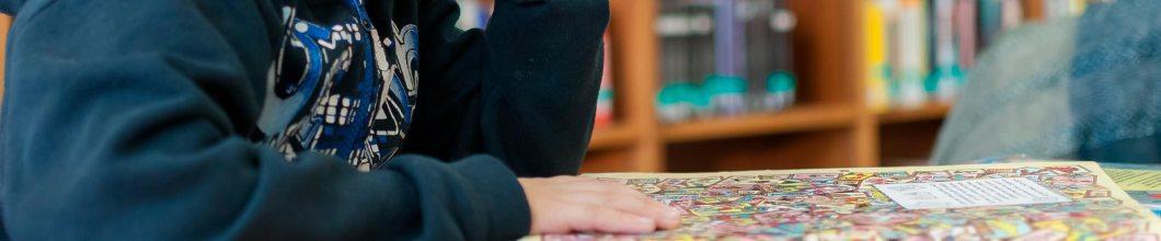 Ajedrez y libros de ajedrez educativo