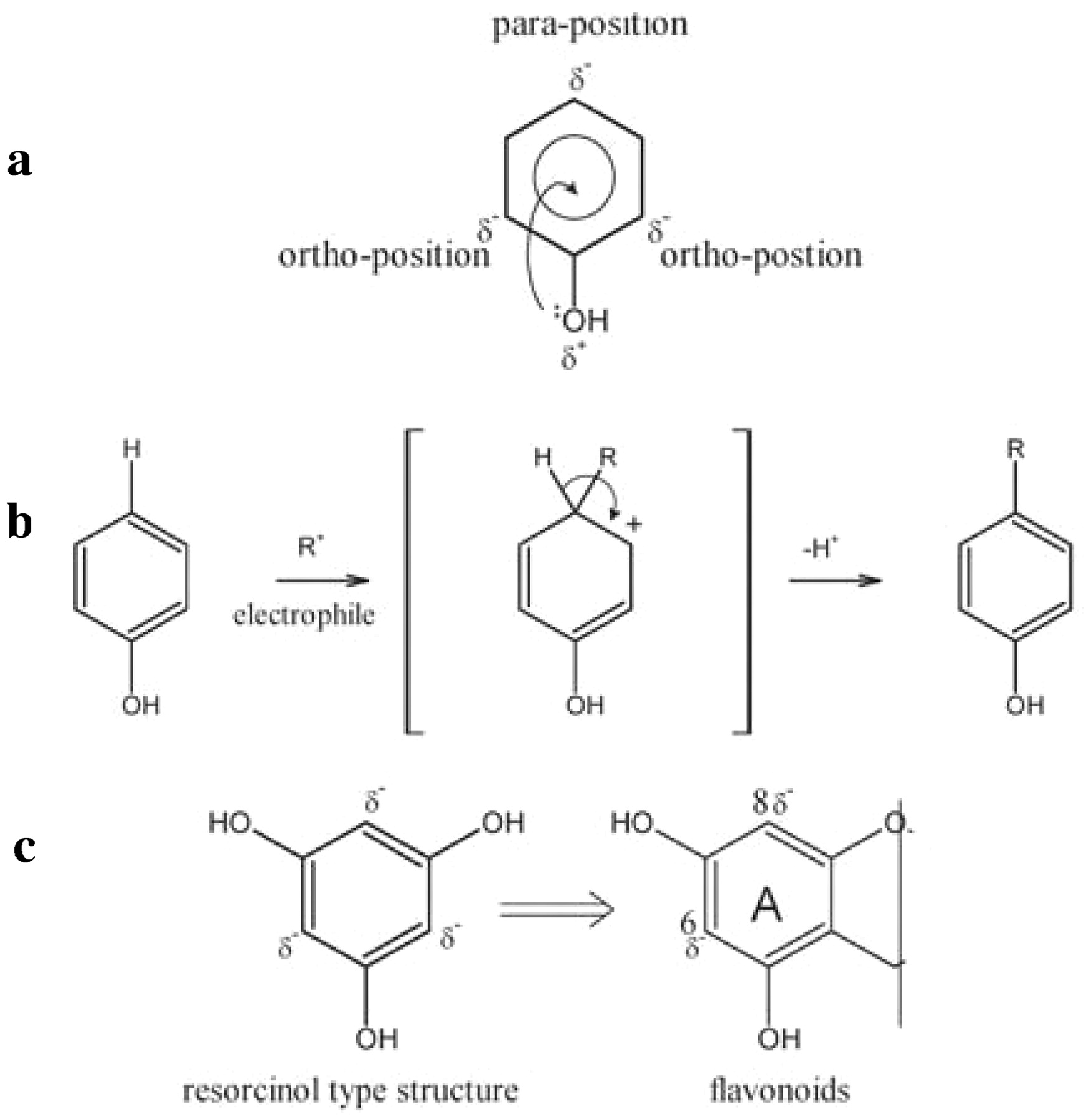 Phenolic Reactions During Winemaking And Aging