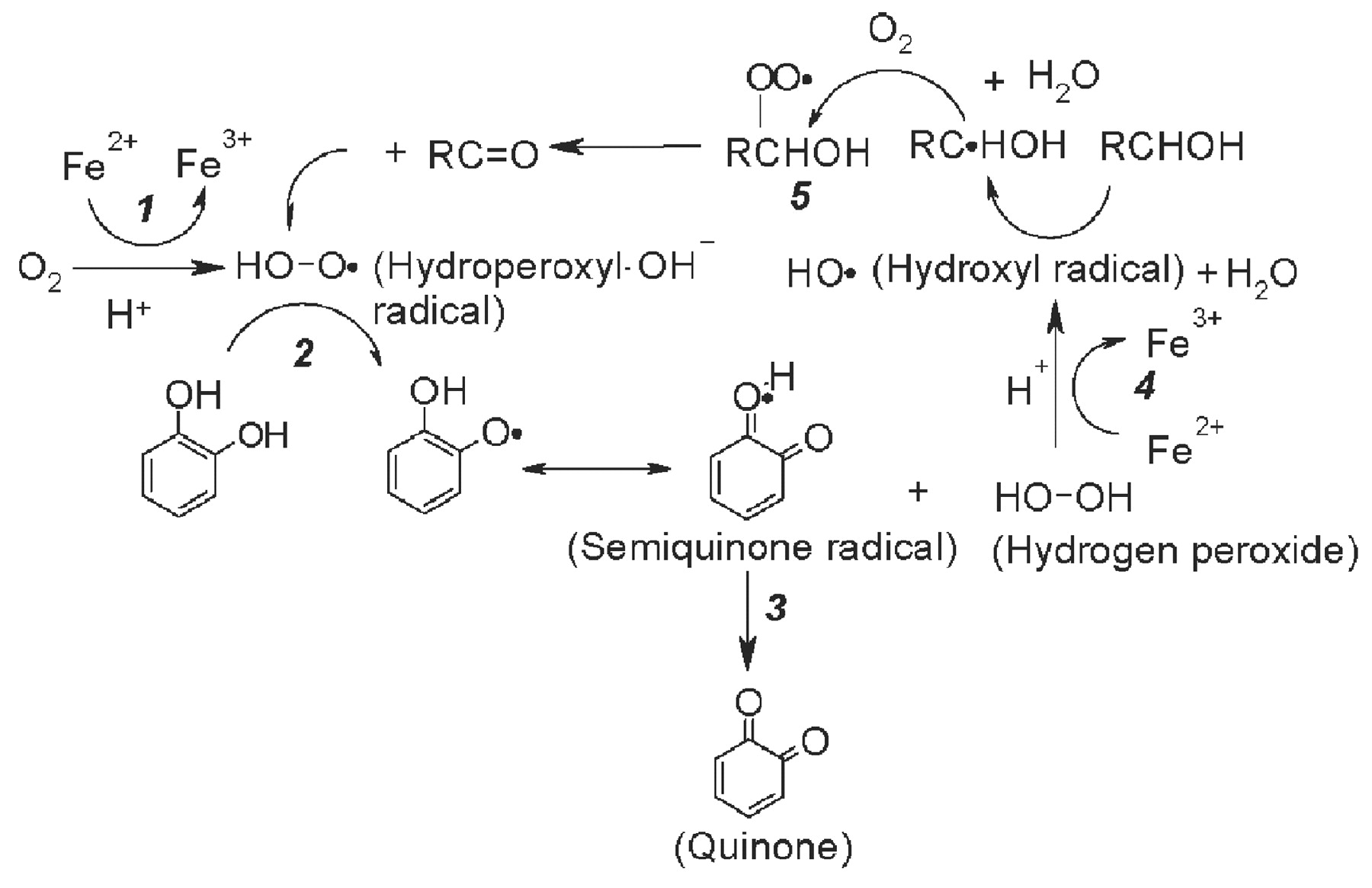 Peroxide Equation Hydrogen Chemical