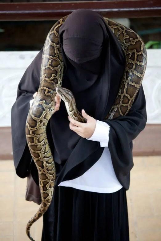 femme niqab serpent