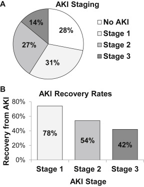 Recovery From Acute Kidney Injury and CKD Following Heart