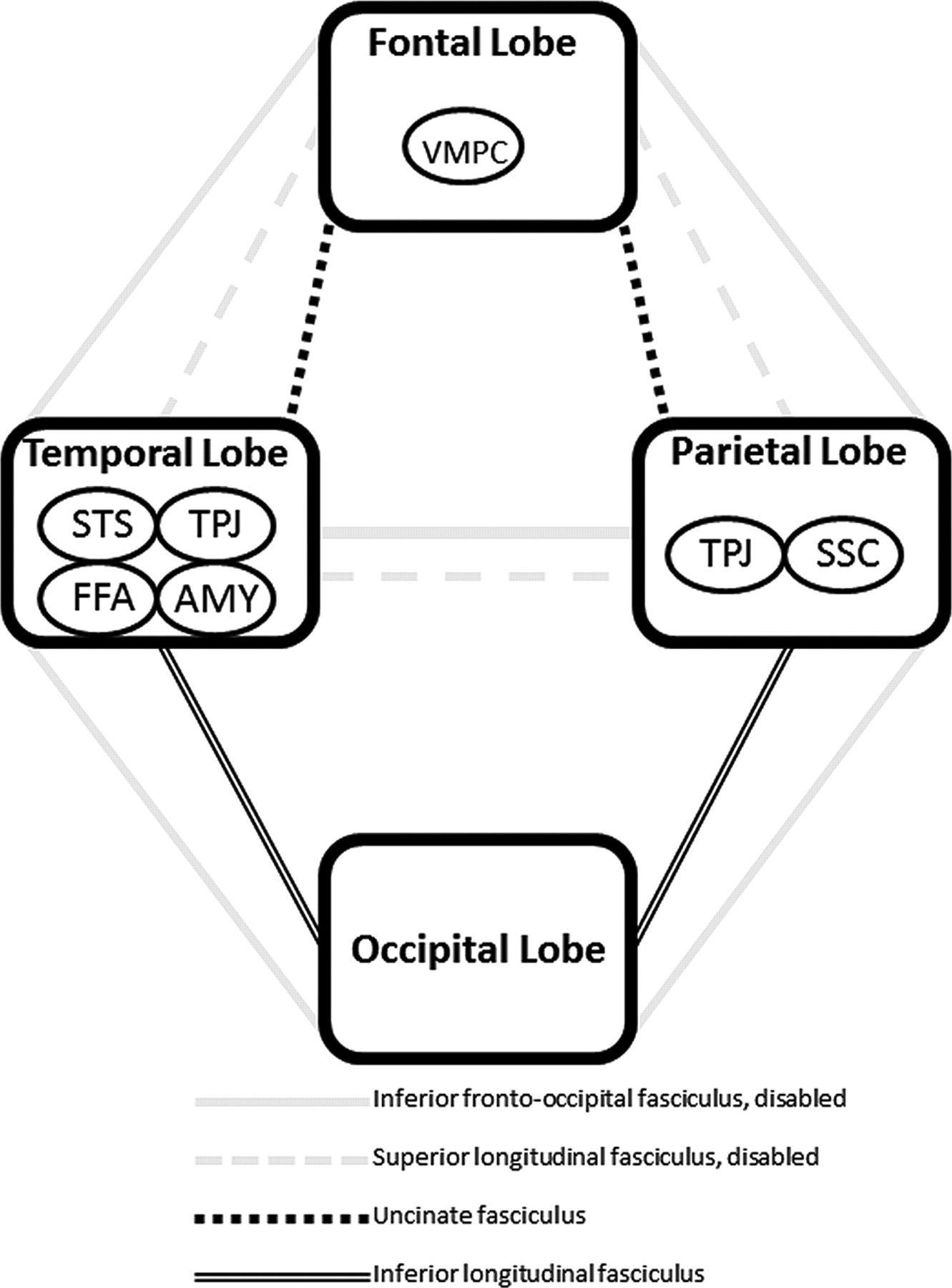Structural Neural Phenotype Of Autism Preliminary