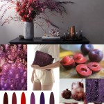 Color Muse: Shades of Plum