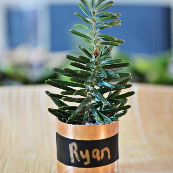 Mini Copper Tree Place Cards