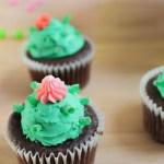 Easy Cactus Cupcakes