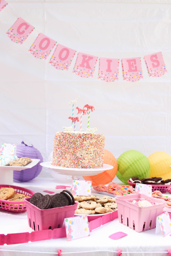 Animal_cookie_party-46