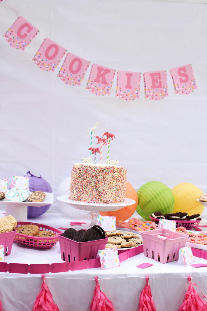 Animal_cookie_party-61