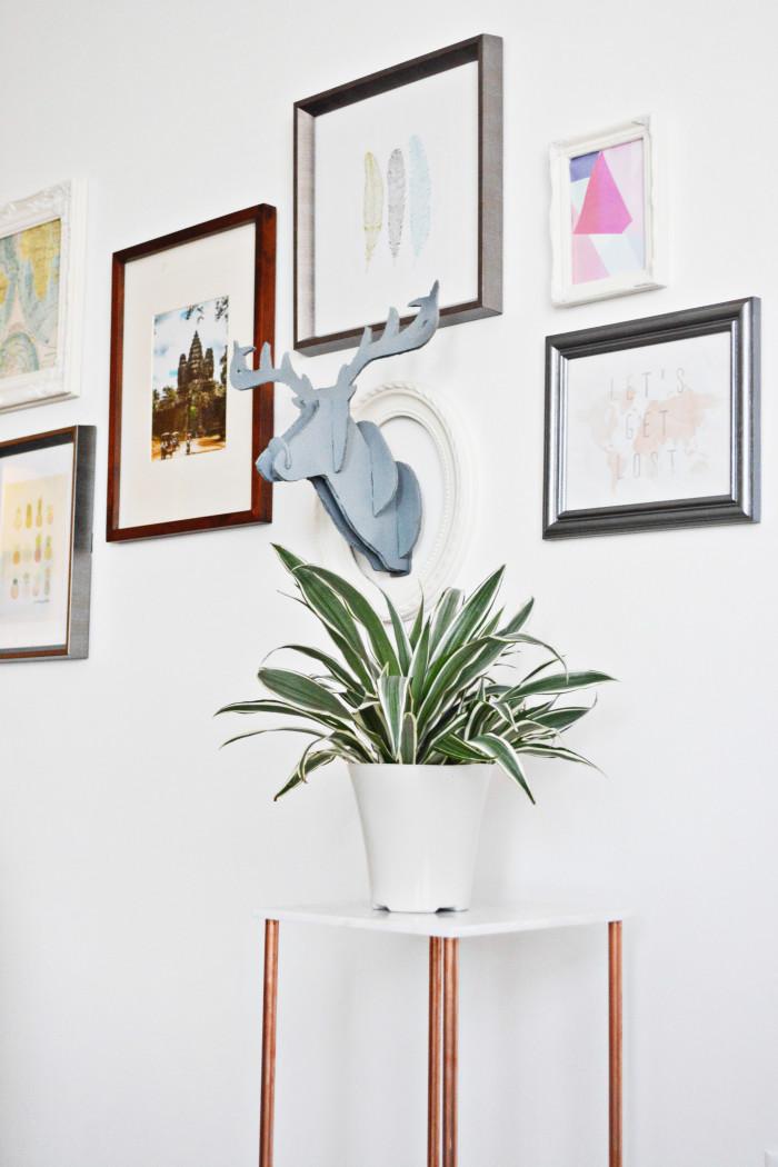 plantholder2