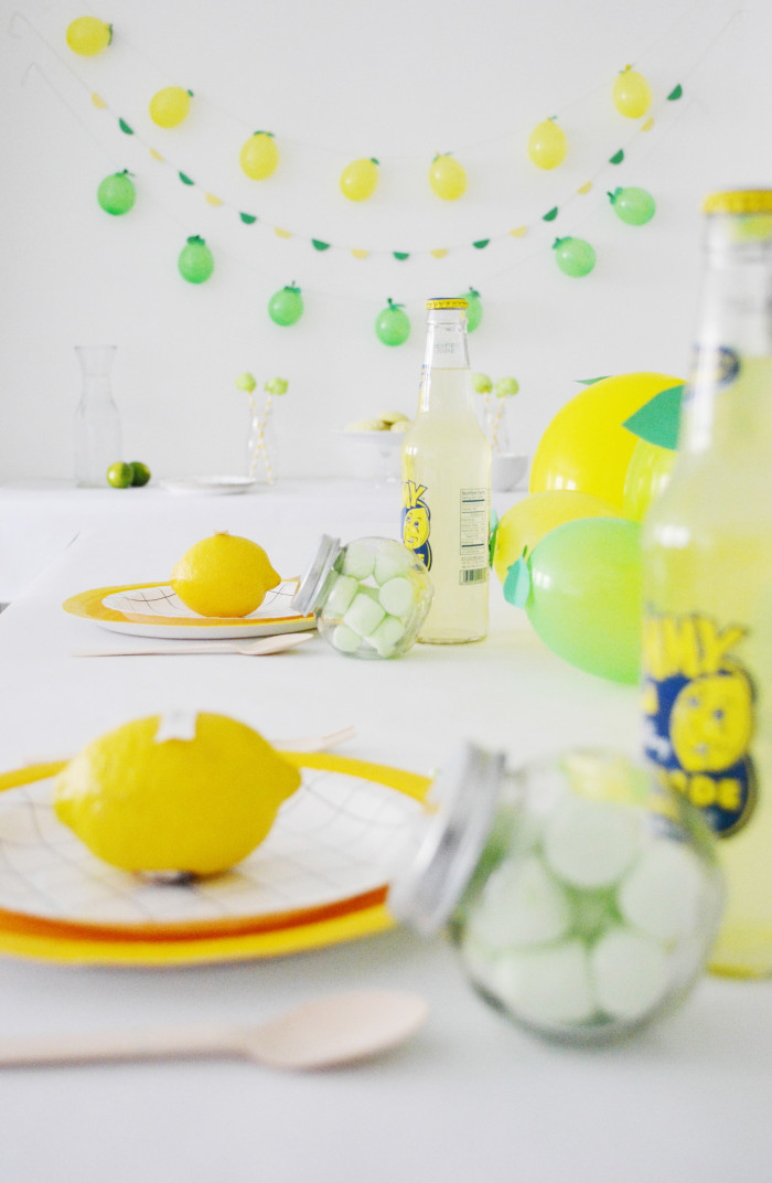 lemonlimeparty_34