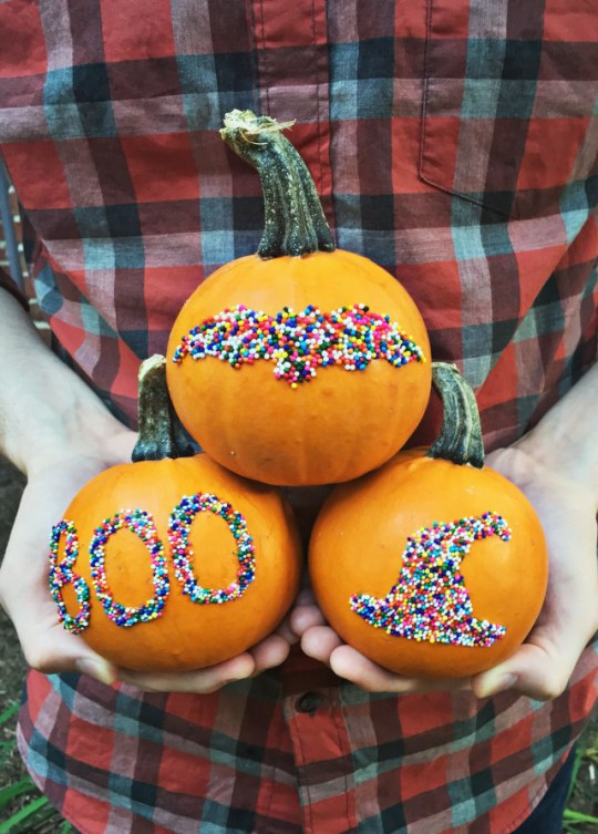 sprinkle pumpkins AJR