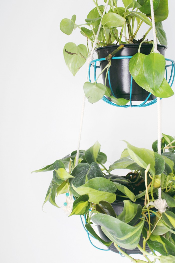 DIY hanging planter from ajoyfulriot.com @ajoyfulriot