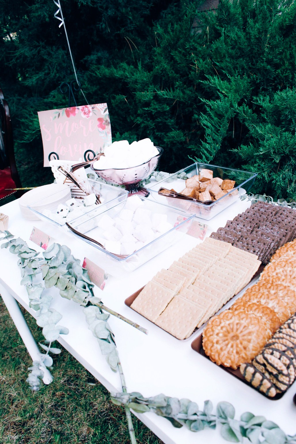 Smore Lovin' Smores bar at pink and rose gold bridal shower