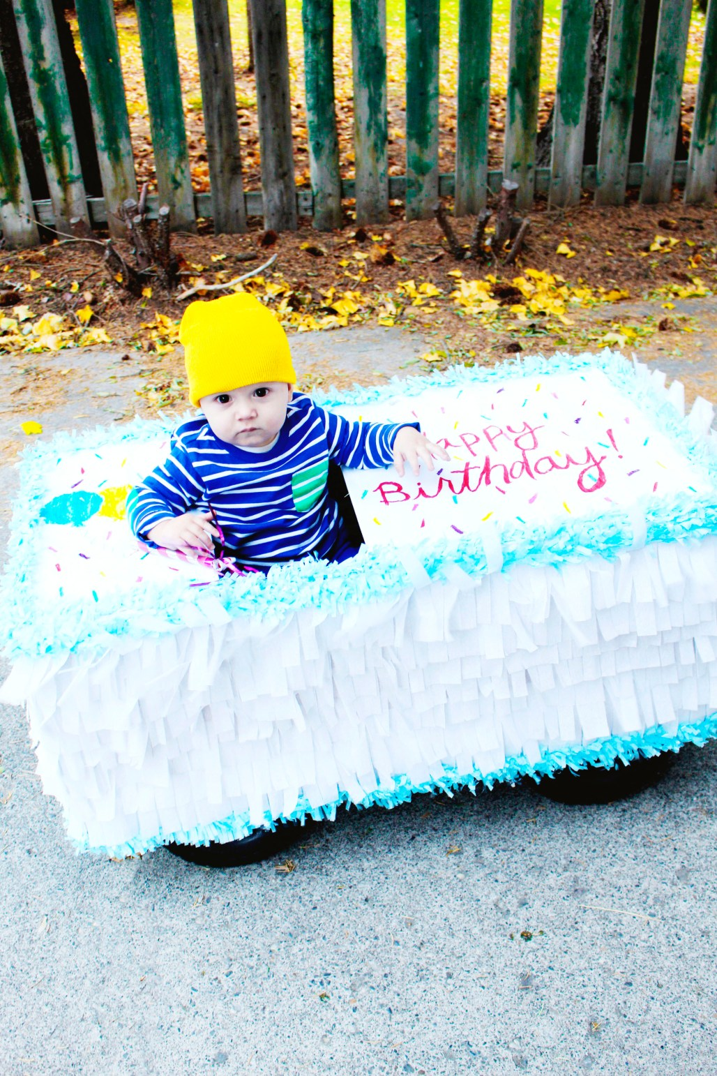 DIY sheet cake birthday cake halloween costume