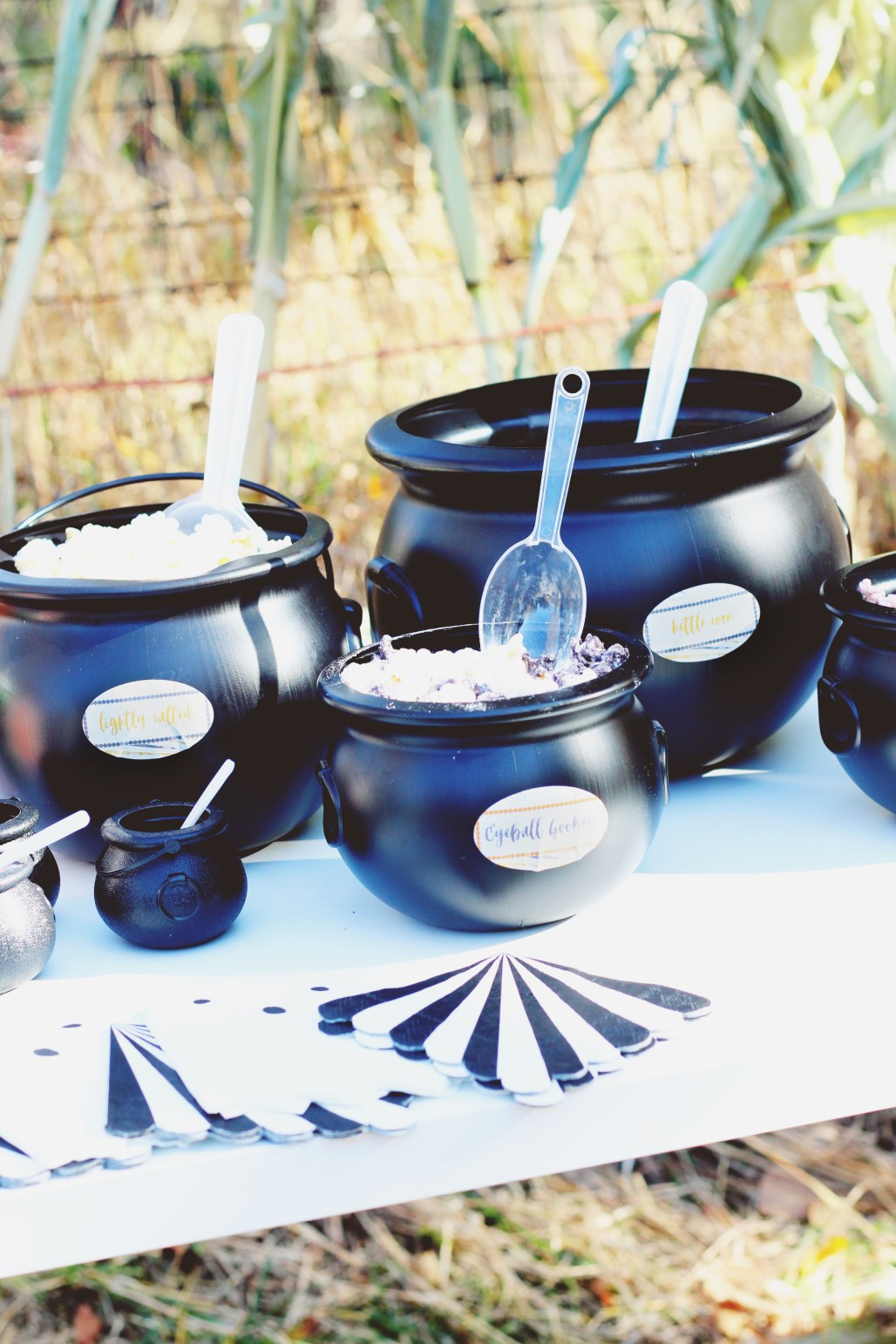 halloween carnival birthday party popcorn bar in mixed size cauldrons