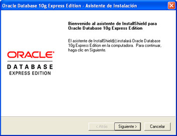 Instalar Oracle Database 10g Express Edition - Asistente de instalación