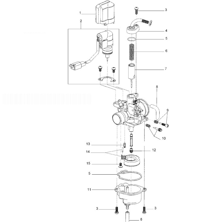 MALAGUTI F15 LC-2D RESTYLING EURO 2 Carburettor