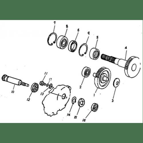 Kazuma Dingo 150 Wiring Diagram Kazuma 150Cc Wiring
