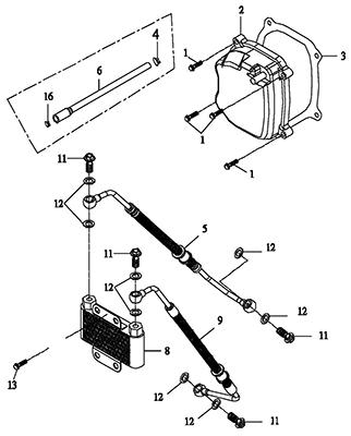 Cylinder Head Cover (Thunder Bike 150)