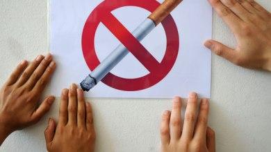 """صورة مؤسسة ثقافية مدنية تطلق مبادرة """" اترك التدخين من أجل صحتك والاخرين """" """"والعنكبوتية  """" تعيق عمل القائمين بها"""