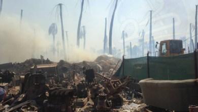 صورة بالصور اندلاع حريق كبير في سوق للبالات وسط بستان زراعي في الديوانية