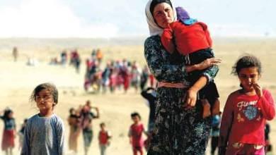 صورة الأمم المتحدة: «داعش» يُواصل إبادة جماعيّة ضدّ الأيزيديين