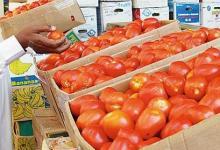 صورة بسبب الاعتماد على ايران ..الزراعة تحمل التجار مسؤولية أزمة الطماطم