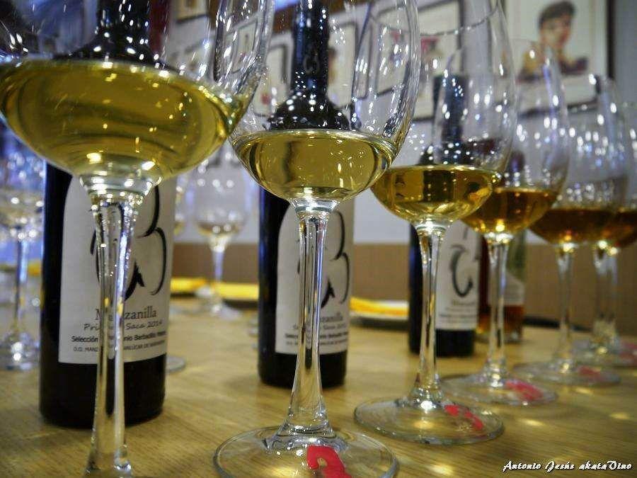 ASM Evento Cata Jerez Sacristia AB Nerva © akataVino (30)