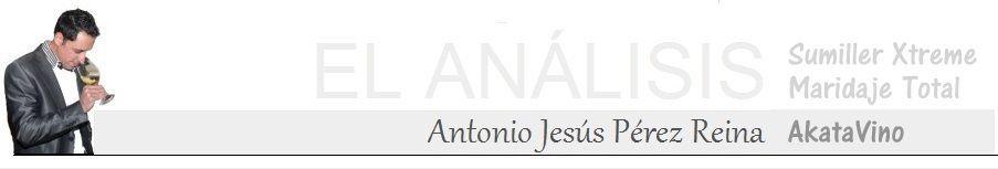 Antonio Jesus Perez Reina El analisis 900X Sumiller
