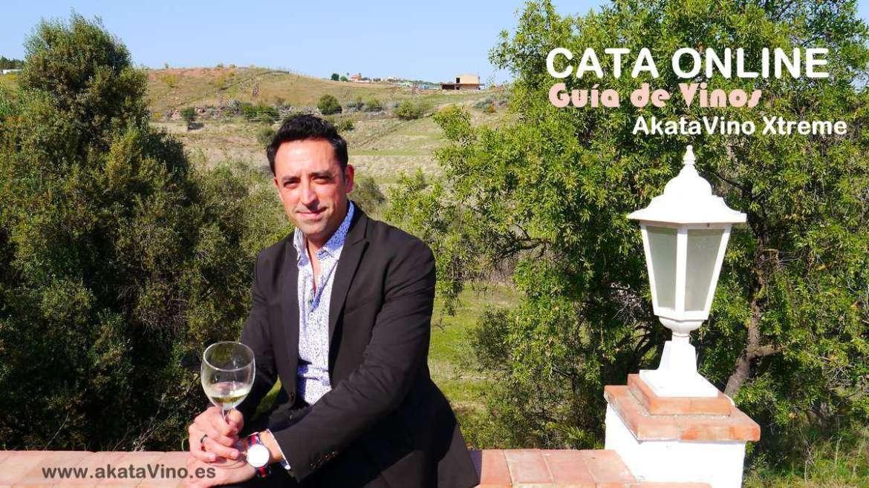 Antonio Jesus cata online web
