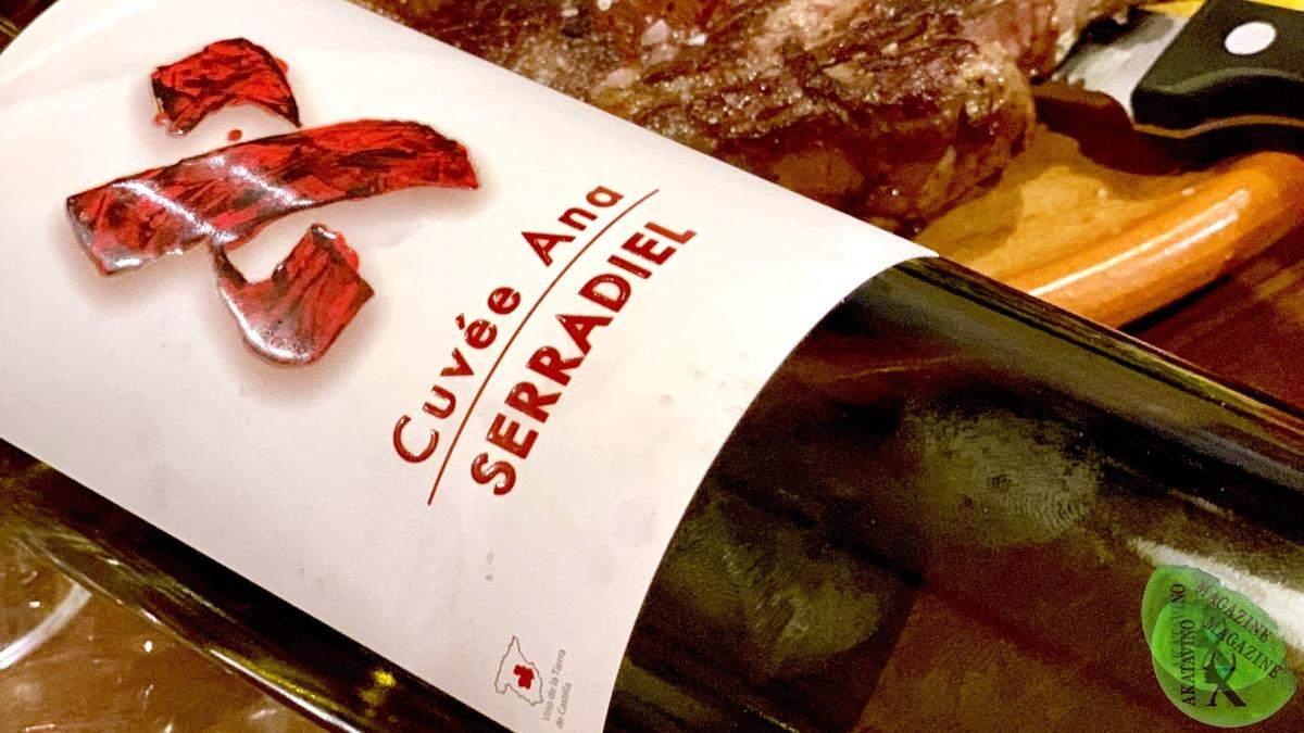 Aleph Winery pasión por la tierra y por el vino | Vinos a Examen