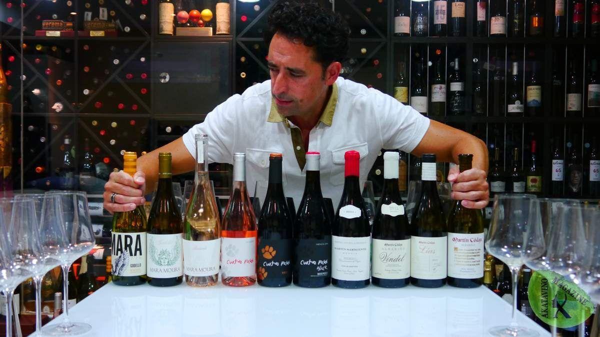 3 uvas, 3 zonas, 3 bodegas y un nombre propio: Martín Códax. Analizamos a fondo sus mejores vinos.