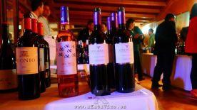 Evento ASM I Salon de Vinos 2014.12.01 (197)