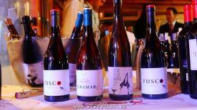 Evento ASM I Salon de Vinos 2014.12.01 (306)