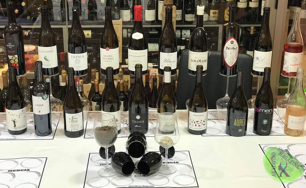 Mejores Vinos Mencía Territorio Mencia TOP 30 © Akatavino (21)