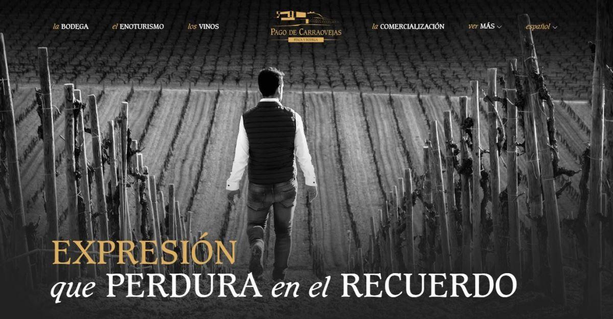 Imagen Nueva pagina web pago de carraovejas