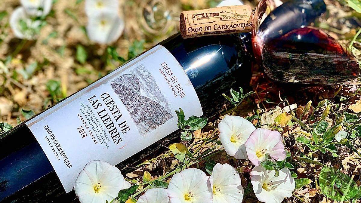 Pago de Carraovejas. Viticultura a la carta, caprichos del terroir | AkataVino Magazine